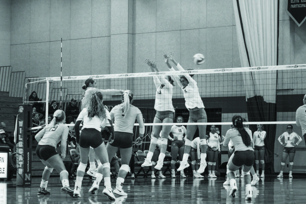 Photo+by%3A+Jacob+Darner%0A%0AThe+Wildcat+Volleyball+team+took+a+tight+matchup+against+Lake+Superior+State+down+to+the+wire.