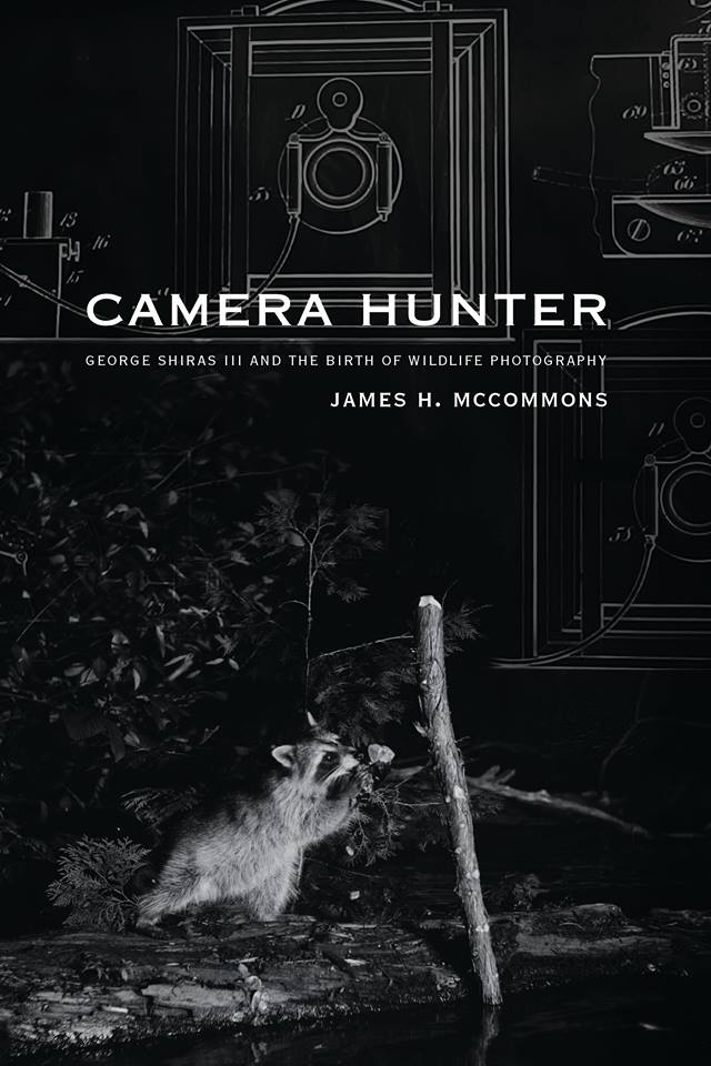 YUM, PINE—A raccoon pulls on a bait for a camera trap set up by George Shiras to catch shots of wildlife in the U.P. at night, also on the cover of James McCommons new book. Photo courtesy of James McCommons