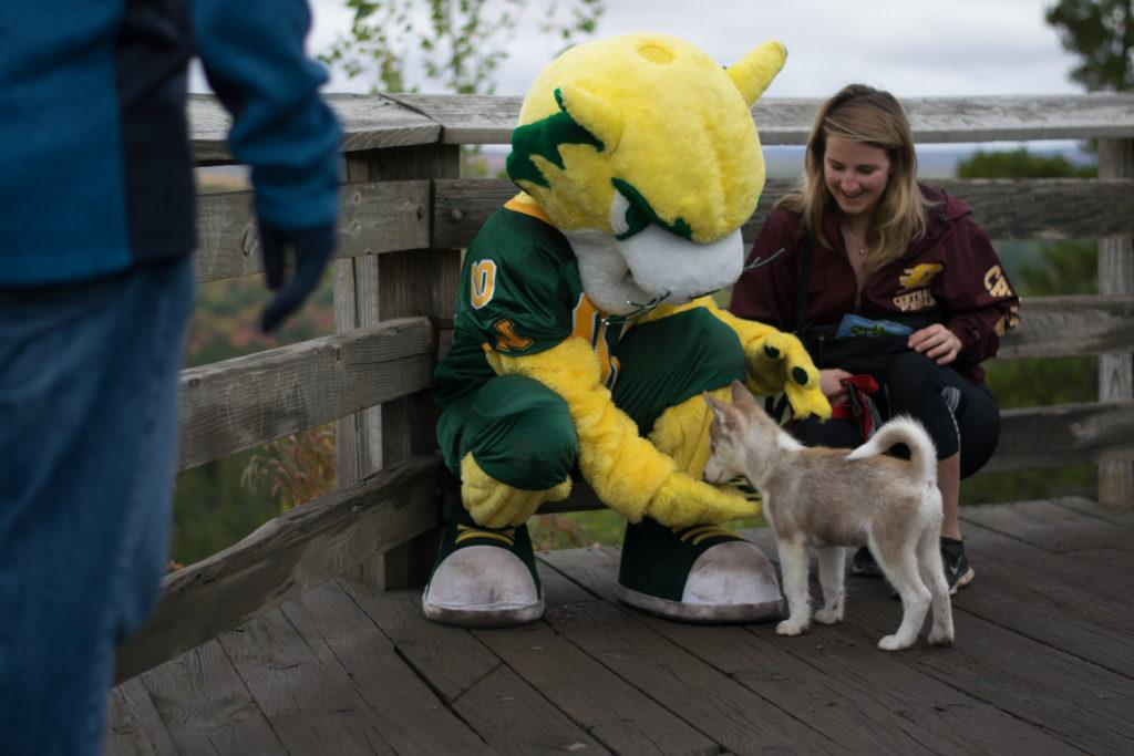 CATS AND DOGS—Even puppies hike the 1.2 mile round trip  to stop at the top and sniff the peculiar sized cat. Due to limited parking at Sugarloaf Mountain, NMU will offer a shuttle to take families from the Superior Dome to the popular hiking spot with rides starting at 10 a.m. Photo courtesy of Rachel Harris