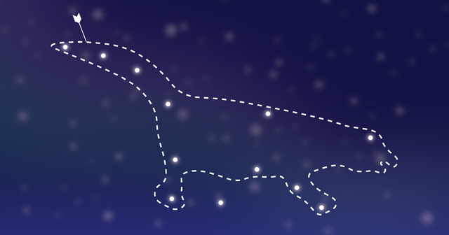 Graphic depicting a constellation of a platypus
