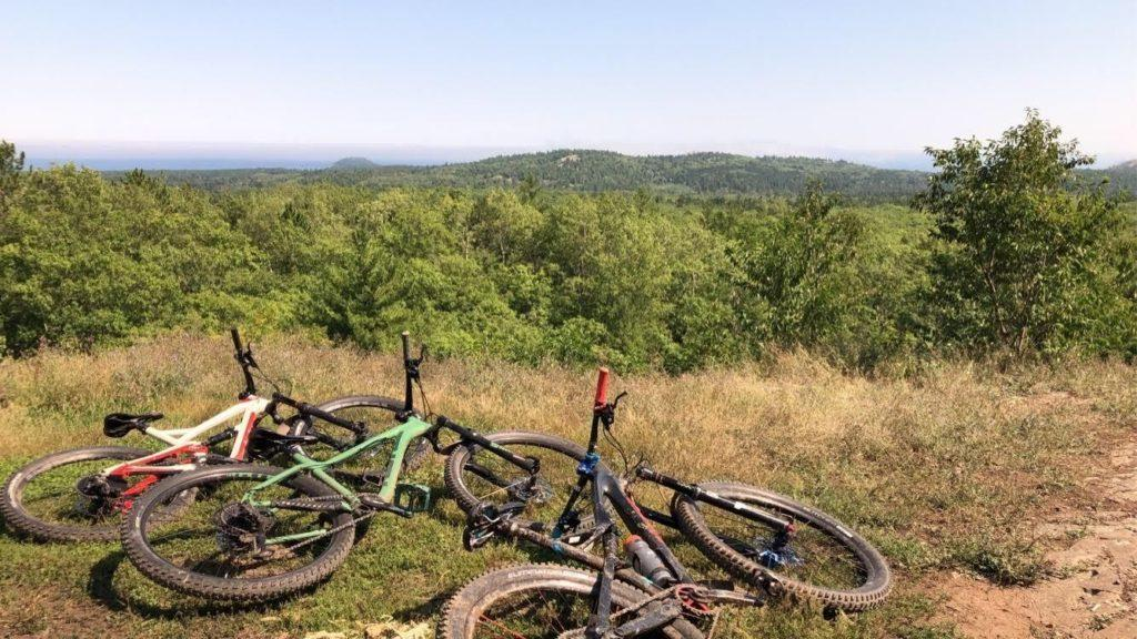 Three bikes laying on the ground overlooking a forest