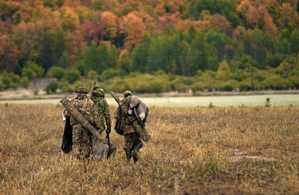 Photo courtesy of State of Michigan DNR NOT WABBIT SEASON, IT'S DUCK SEASON—Duck season has begun in the U.P. as of Saturday, Sept. 26, and will run through late November.