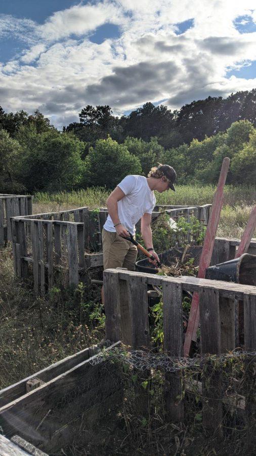 composting at hoop house