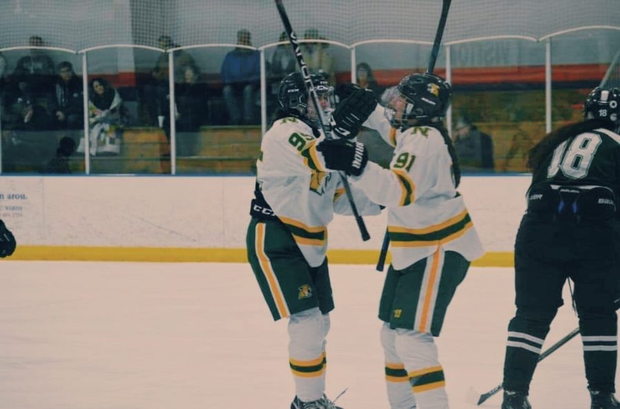 TEAM CHEMISTRY—The NMU womens hockey team looks to improve over the next few weeks before traveling downstate to take on Michigan State on Saturday, Nov. 6 and Sunday, Nov. 7. Photo courtesy of Faith Delgado.